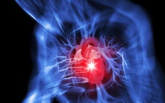 Staminali mesenchimali e cardiotrofina per trattare il cuore colpito da infarto