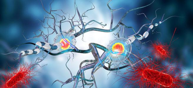 34 i trapianti di cellule staminali andati a buon fine con Vita 34