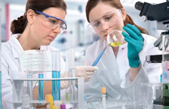 Nuovo successo per Vita 34: sono 42 i trapianti di cellule staminali andati a buon fine